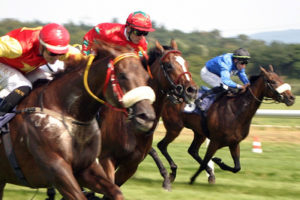 Horses Racing to a Finishing Line