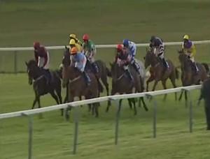 Live Horse Racing Stream
