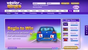 Winner Bingo Screenshot