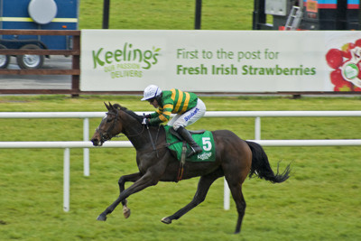 Irish Racing at Fairyhouse
