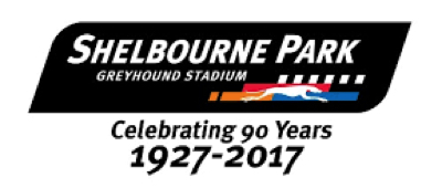 Shelbourne Park Greyhound Stadium