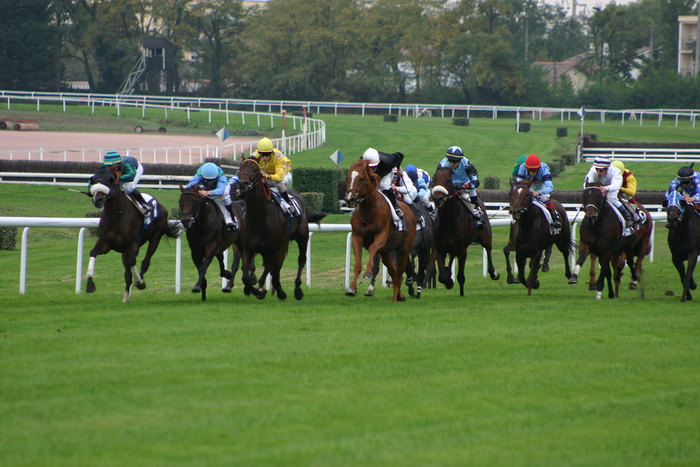 Horse Race with Jumps