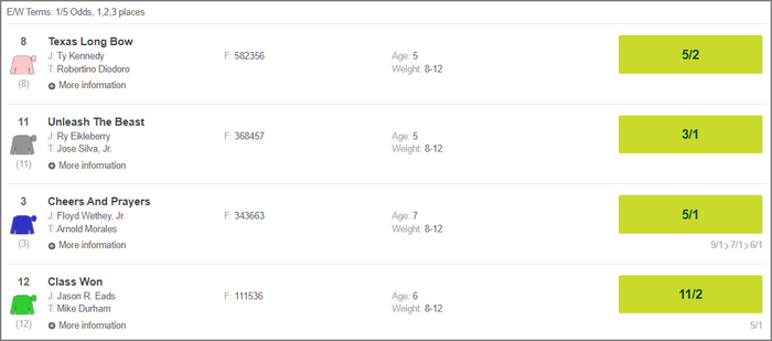 Paddy Power Horse Race Screenshot