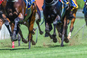 Horses Hooves During Race