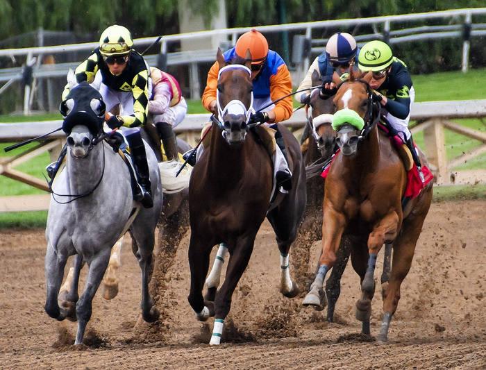 Horse Race on Sand
