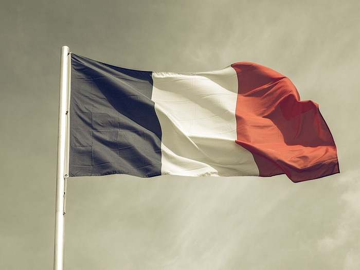 Vintage Effect French Flag