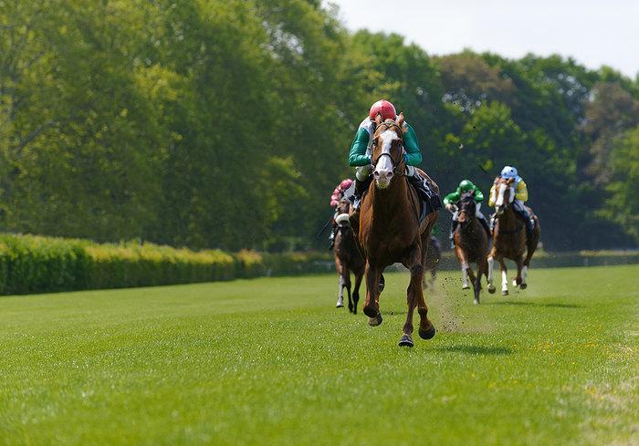 Horse Leading Race by Wide Margin