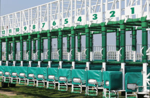 Horse Starting Gate Numbers