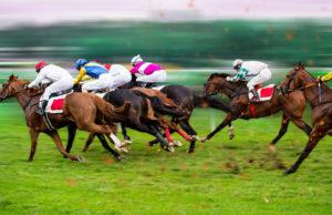 Horses Racing Towards the Finish