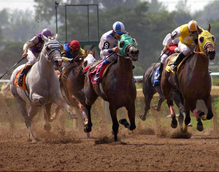 Horse Race Finish on Dirt