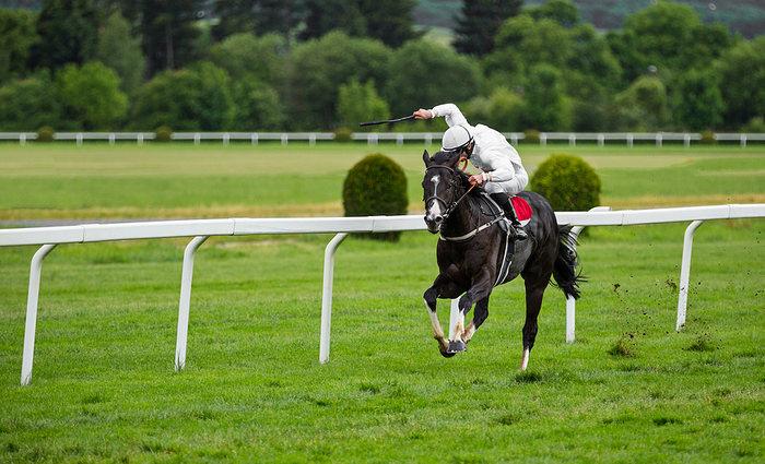 Jockey in White Silks Riding in Race
