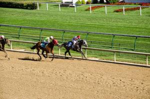 Kentucky Dirt and Turf Racecourses