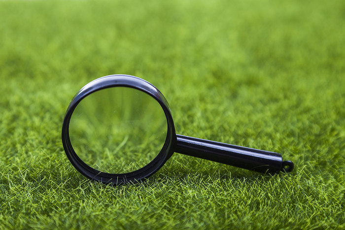 Magnifying Glass on Grass