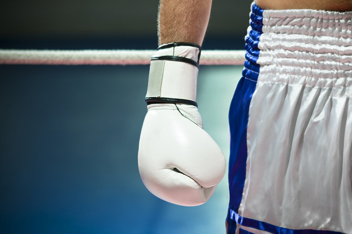 Boxer Standing in Ring