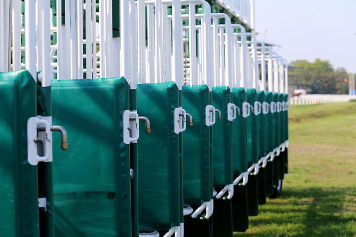 Horse Race Starting Gates Close Up