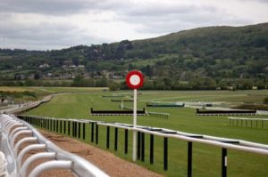 Racecourse views