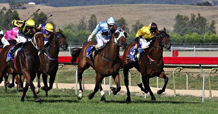 Horse racing lead