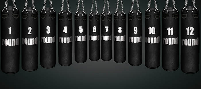 Boxing Round Punch Bags