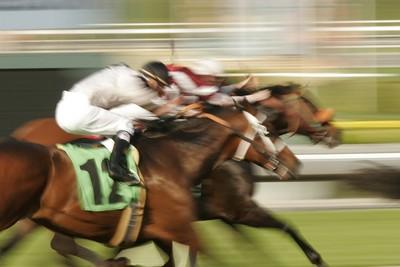 Blurred Horse Race Finish