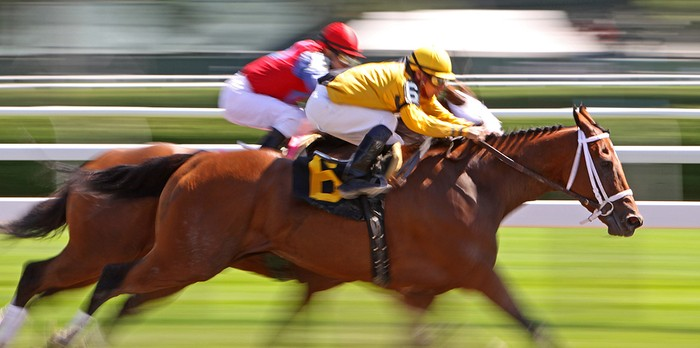Blurred Horse Race Finish with Jockeys Wearing Yellow and Red Silks