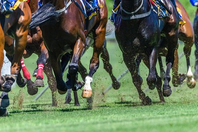Hooves of Horses During Race