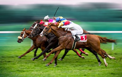 Horse Race Field Bunched Finish