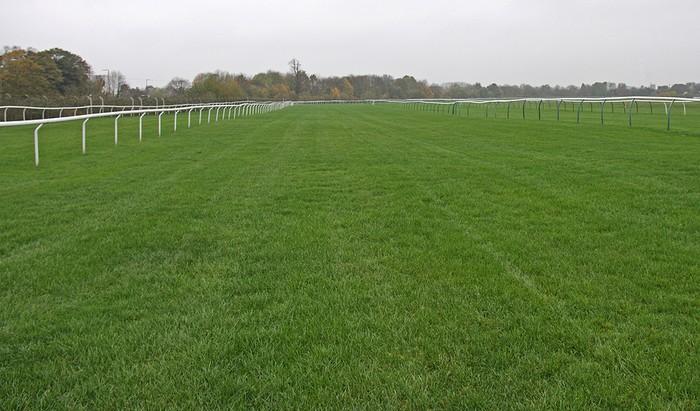 Racecourse Empty
