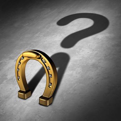 Horse shoe question mark